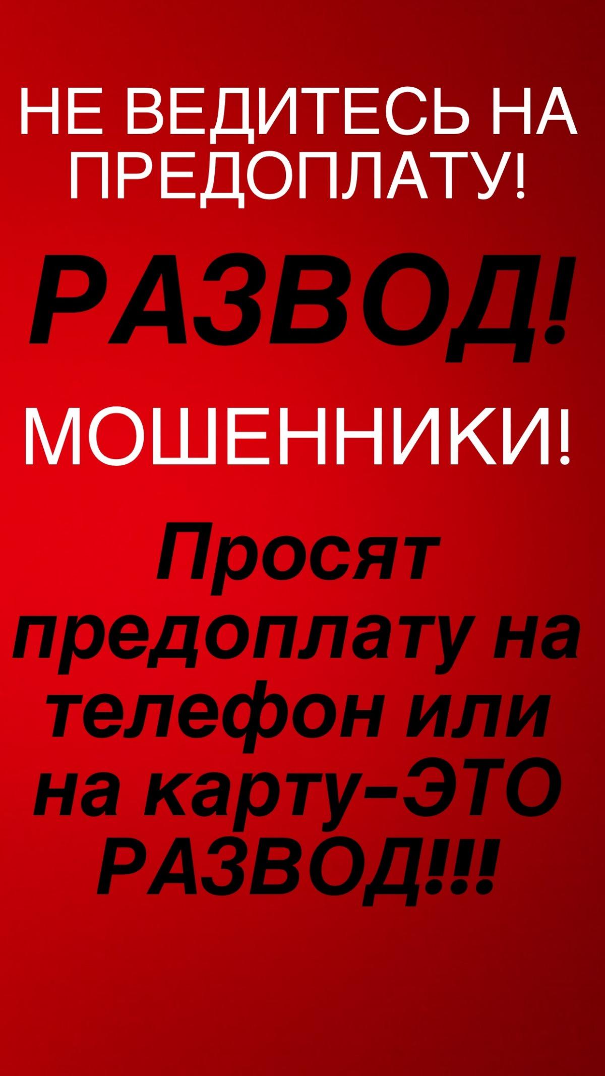 Anadyr  Online  Главные публикации
